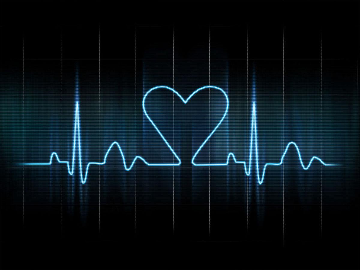 Kardiologia weterynaryjna